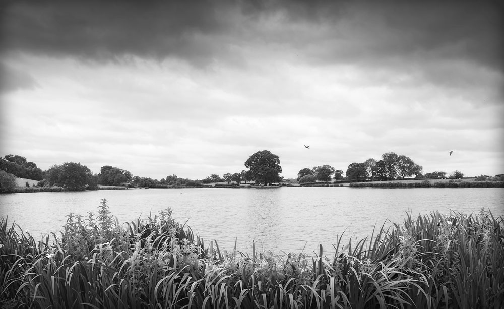 lakeside, black and white, cheshire wedding photographer, sandhole oak barn